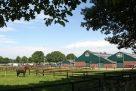 Paardensportcentrum Lichtenvoorde, ruimtelijke ordening, hippische bedrijven